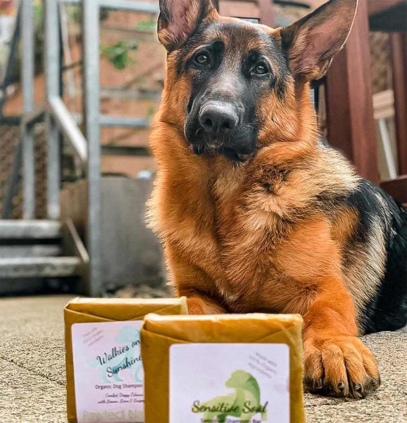 pawfect nature organic dog treats